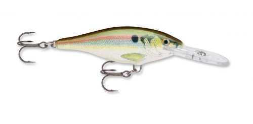 Rapala Shad Rap 7 Custom HD Live River Shad Jagged Tooth Tackle