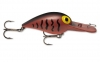 Storm Original Wiggle Wart - Brown Crawdad